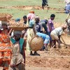 Rural job scheme fails to pull tribal people