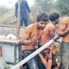 Atrocity cases on the rise after Una dalit flogging